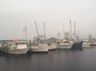 panama-fishing-fleet